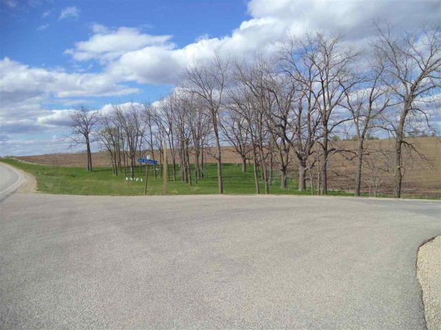 21042 Hwy 23, Willow Springs, WI 53565 (#1856724) :: Nicole Charles & Associates, Inc.