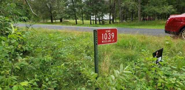 1039 Woodland Ln, Rome, WI 54457 (#1863682) :: Nicole Charles & Associates, Inc.