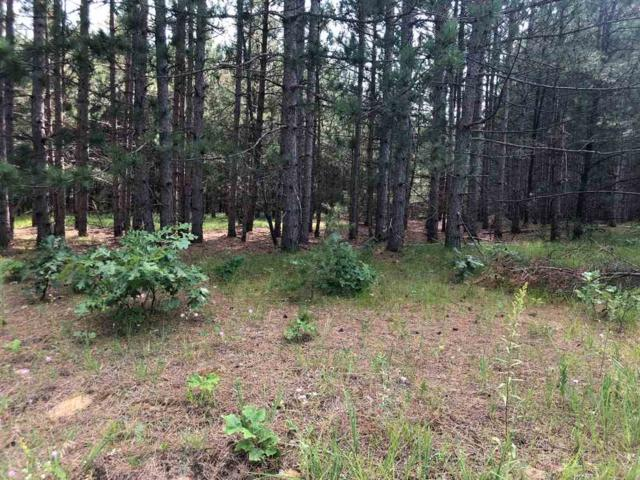 2.10 Ac W 17th St, Necedah, WI 54646 (#1863909) :: HomeTeam4u