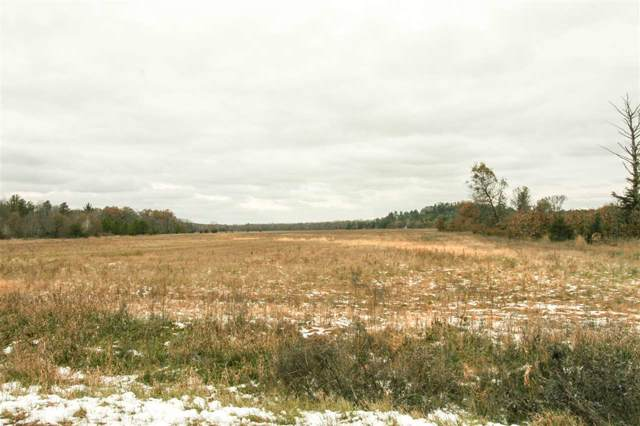66 Ac 26th Ave, Marion, WI 53948 (#1873046) :: HomeTeam4u