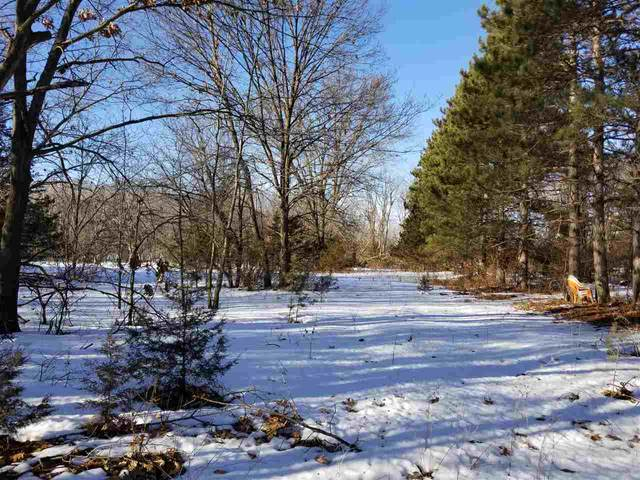 1.17 Ac Hwy 16, Lewiston, WI 53901 (#1877334) :: Nicole Charles & Associates, Inc.