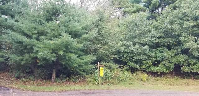 .71 Ac Pine View Ct, Delton, WI 53913 (#1877360) :: RE/MAX Shine