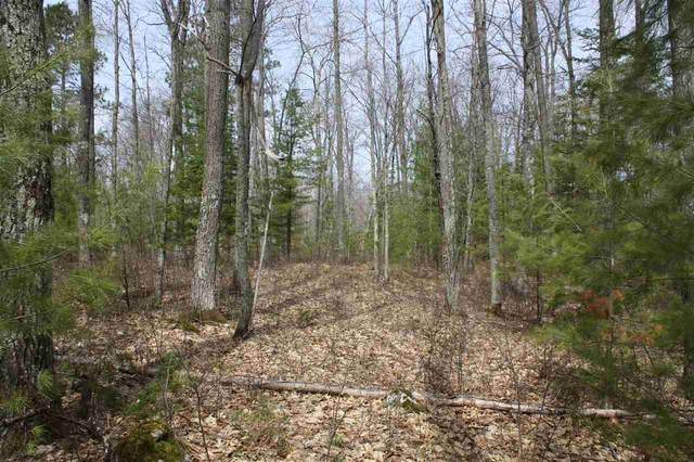 Lot 9 On American Eagle Ct, Lake Tomahawk, WI 54539 (#1880278) :: Nicole Charles & Associates, Inc.