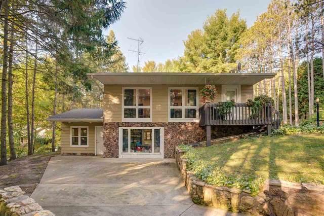 N8439 Pine View Dr, Newport, WI 53965 (#1895311) :: HomeTeam4u