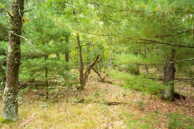 33 AC (Lot 1) 47th St, Marion, WI 53948 (#1918098) :: RE/MAX Shine