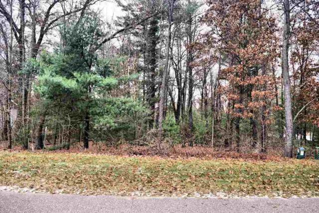 312 Pine Meadow Ct, Lake Delton, WI 53965 (#1845832) :: Nicole Charles & Associates, Inc.