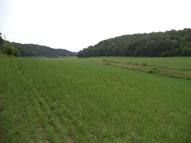 343 Ac Knight Hollow Rd, Arena, WI 53503 (#1875490) :: Nicole Charles & Associates, Inc.