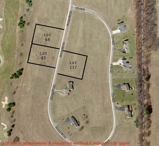 Lot 137 Country Club Dr, Decatur, WI 53520 (#1889968) :: Nicole Charles & Associates, Inc.