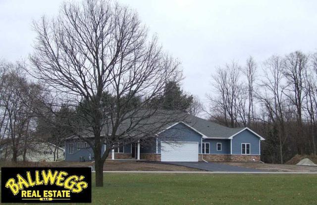 490 Meadow Lark Ln E, Green Lake, WI 54941 (#1843951) :: Nicole Charles & Associates, Inc.