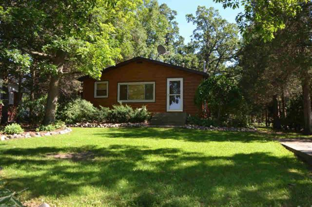 W6486 Lakeview Dr N, Marquette, WI 53946 (#355318) :: Nicole Charles & Associates, Inc.