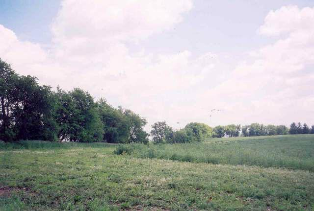 L6 Towns Rd, Sylvester, WI 53566 (#1365310) :: Nicole Charles & Associates, Inc.