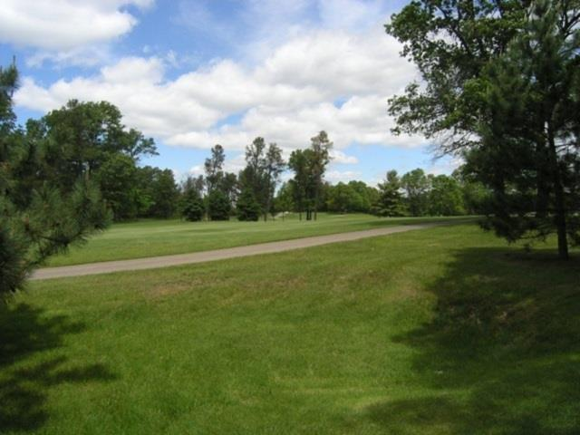 491 & 493 St Andrews Tr, Rome, WI 54457 (#1718986) :: Nicole Charles & Associates, Inc.