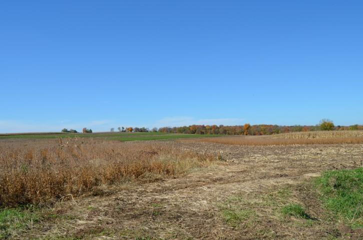 156 Ac State Line Rd - Photo 1