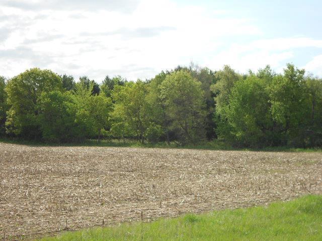 122.37 Ac County Road Cm, Fort Winnebago, WI 53901 (#1733888) :: Nicole Charles & Associates, Inc.