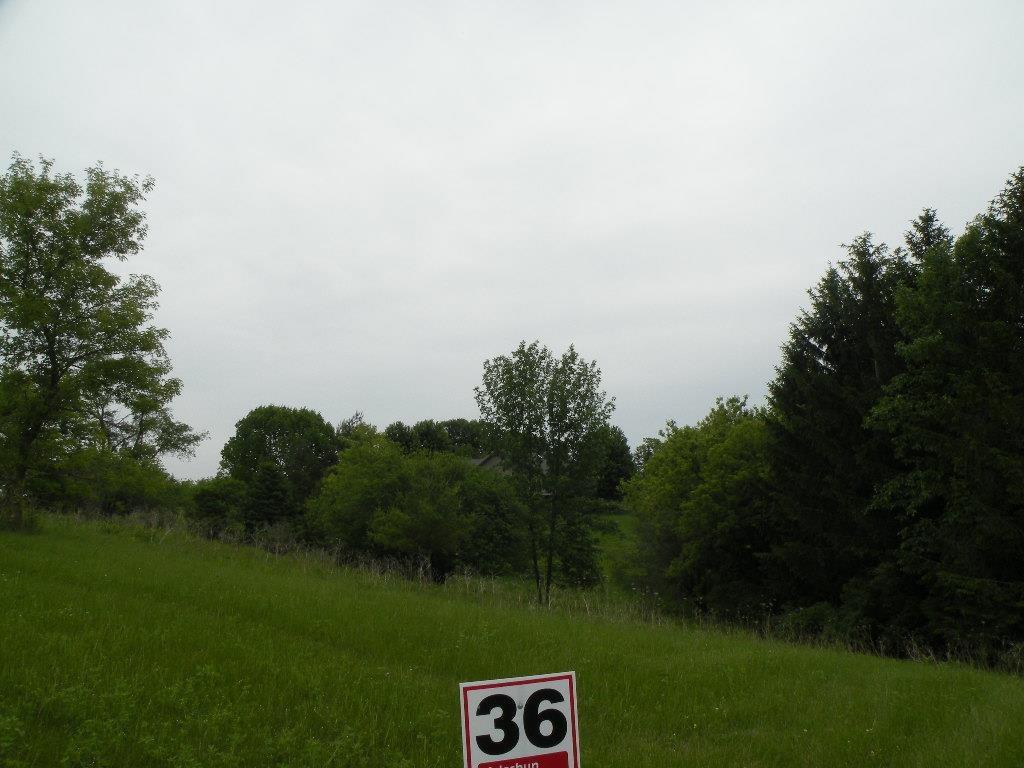 L36 Drumlin Loop - Photo 1