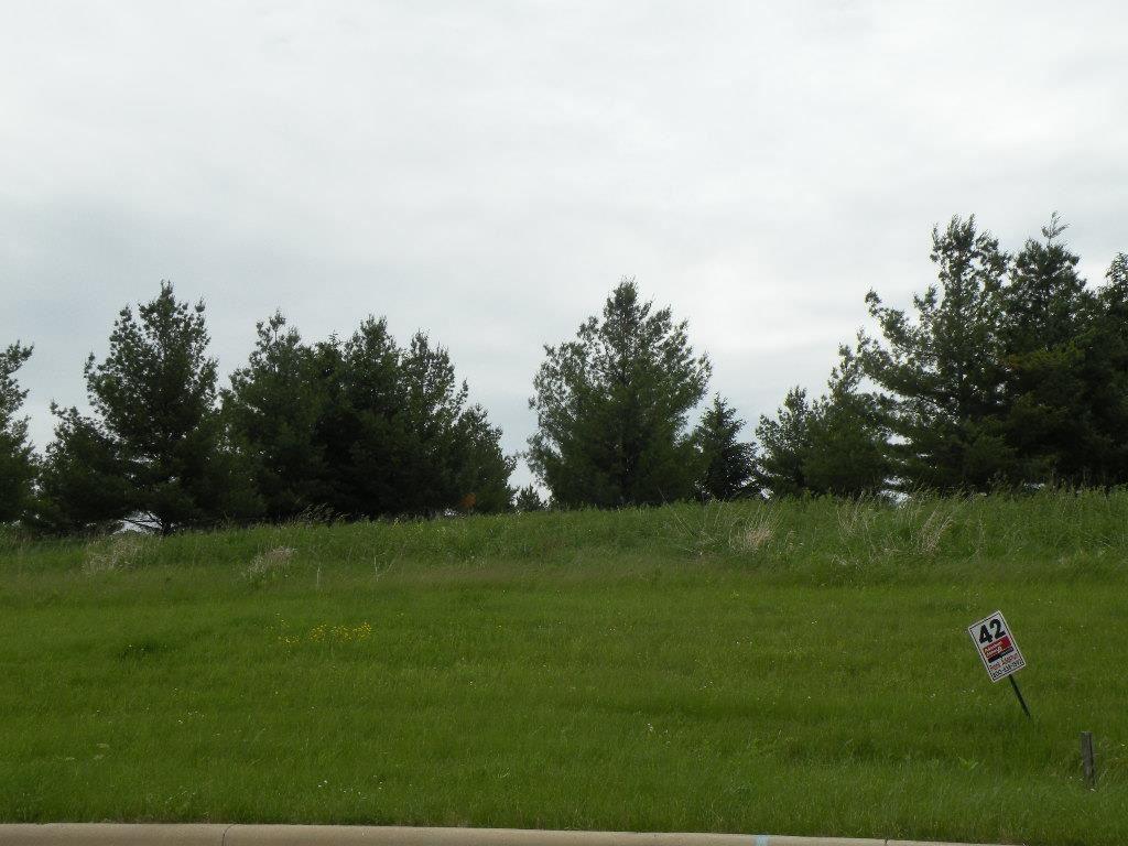 L42 Drumlin Loop - Photo 1