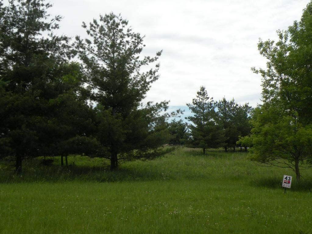 L43 Drumlin Loop - Photo 1
