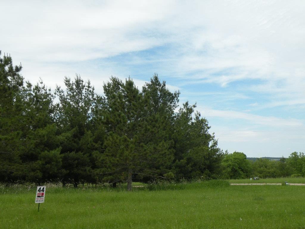 L44 Drumlin Loop - Photo 1
