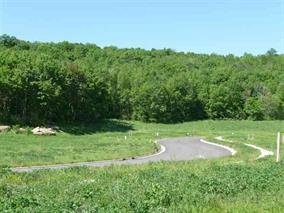 Lot 48 Falcon Crst, Black Earth, WI 53515 (#1742469) :: Nicole Charles & Associates, Inc.