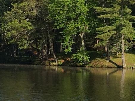 L38 Lake Edge Tr - Photo 1