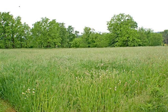 L4 County Road Ee, Mount Pleasant, WI 53502 (#1782163) :: HomeTeam4u