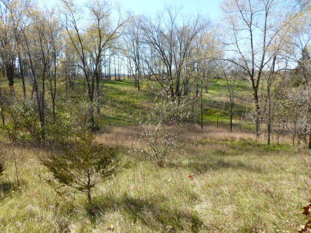 L2 County Road Bd, West Baraboo, WI 53913 (#1787116) :: Nicole Charles & Associates, Inc.