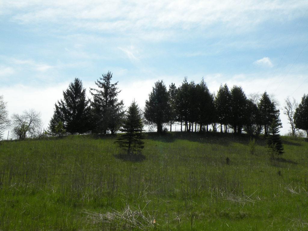 225 Stone Hill Ct - Photo 1