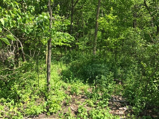 L15 Ringhand Rd, Mount Pleasant, WI 53570 (#1803486) :: Nicole Charles & Associates, Inc.