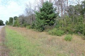 3 Ac County Road C, Big Flats, WI 54613 (#1815027) :: Nicole Charles & Associates, Inc.