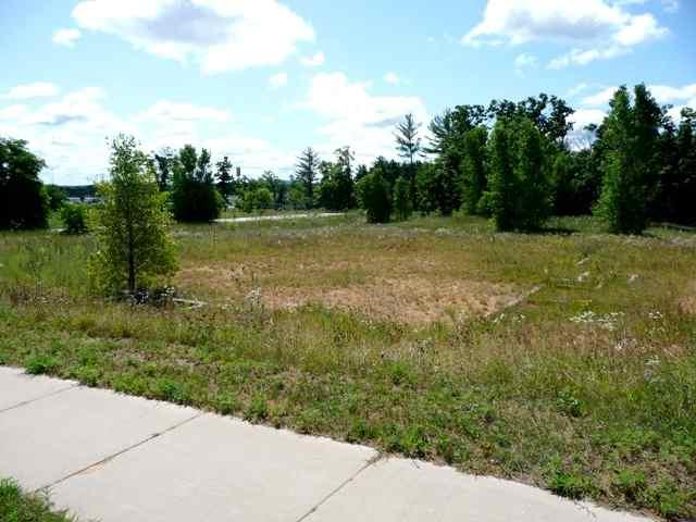 L12 Herriot Dr, Mauston, WI 53948 (#1822896) :: Nicole Charles & Associates, Inc.