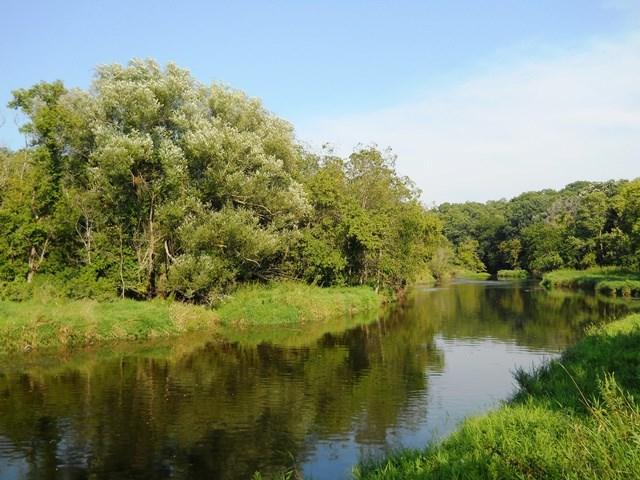 49.4 Ac E Creek Rd, Bradford, WI 53525 (#1824980) :: HomeTeam4u
