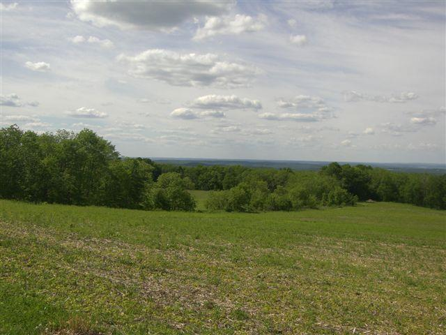 46.10 Ac County Road F, Blue Mounds, WI 53517 (#1827760) :: Nicole Charles & Associates, Inc.