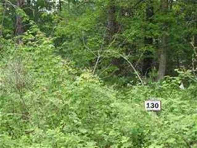 130 Arbor Dr, Lake Delton, WI 53940 (#1828894) :: Nicole Charles & Associates, Inc.