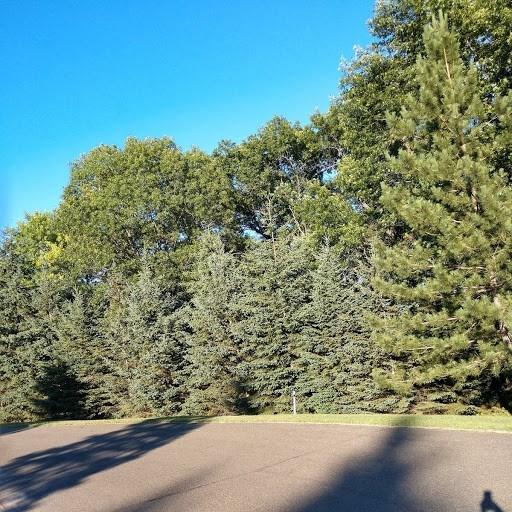 57 Ac Whitetail Dr, Pacific, WI 53954 (#1835516) :: Nicole Charles & Associates, Inc.