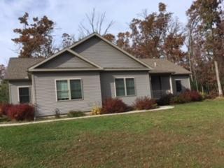 368 Deerfield Ct, Lake Delton, WI 53965 (#1838181) :: Nicole Charles & Associates, Inc.
