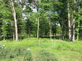 330 Pine Meadow Ct, Lake Delton, WI 53940 (#1839343) :: Nicole Charles & Associates, Inc.