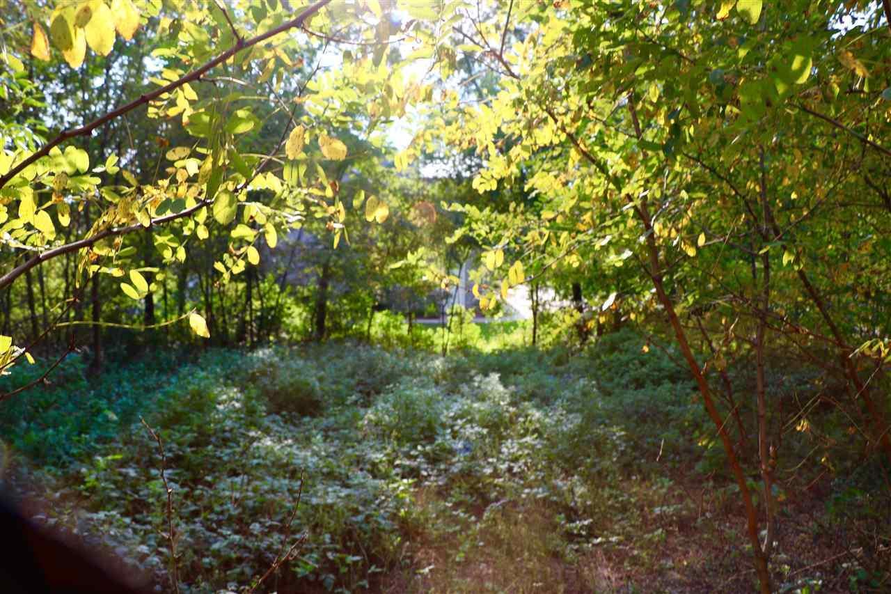 1512 Ridgeview Dr - Photo 1