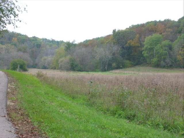 39.16 Ac John Wilkinson Rd, Black Earth, WI 53560 (#1842383) :: Nicole Charles & Associates, Inc.