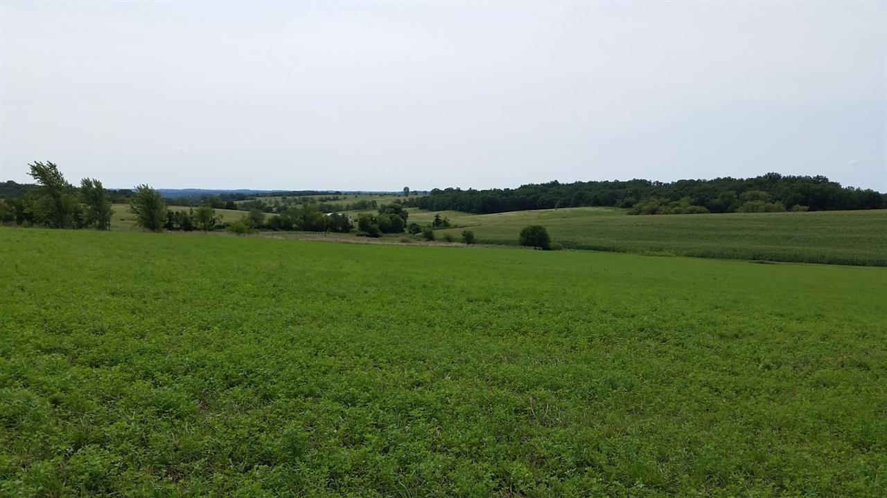 4.31 Ac County Road Nn - Photo 1