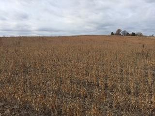50 ac Biggs Rd, Adams, WI 53504 (#1844900) :: Nicole Charles & Associates, Inc.