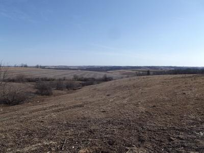 17 Ac County Road N, Wiota, WI 53587 (#1854552) :: Nicole Charles & Associates, Inc.