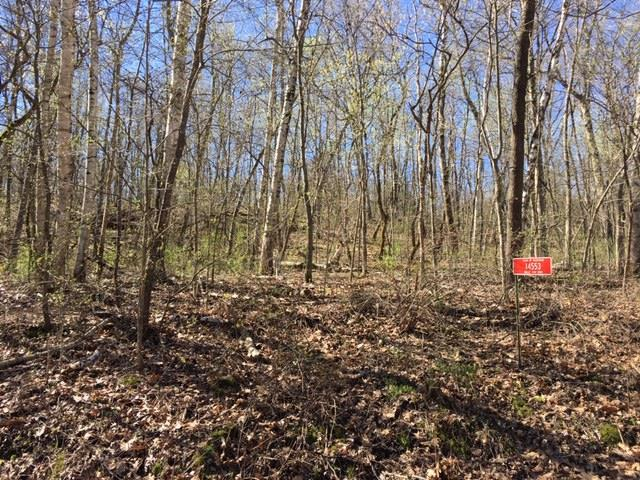 5.5 Ac Valley View Rd, Woodman, WI 53827 (#1855895) :: Nicole Charles & Associates, Inc.