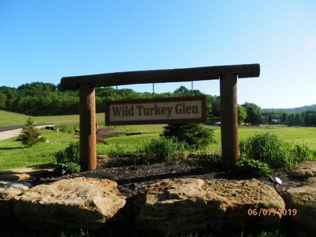 L6 Wild Turkey Ln, Richland, WI 53581 (#1859711) :: Nicole Charles & Associates, Inc.