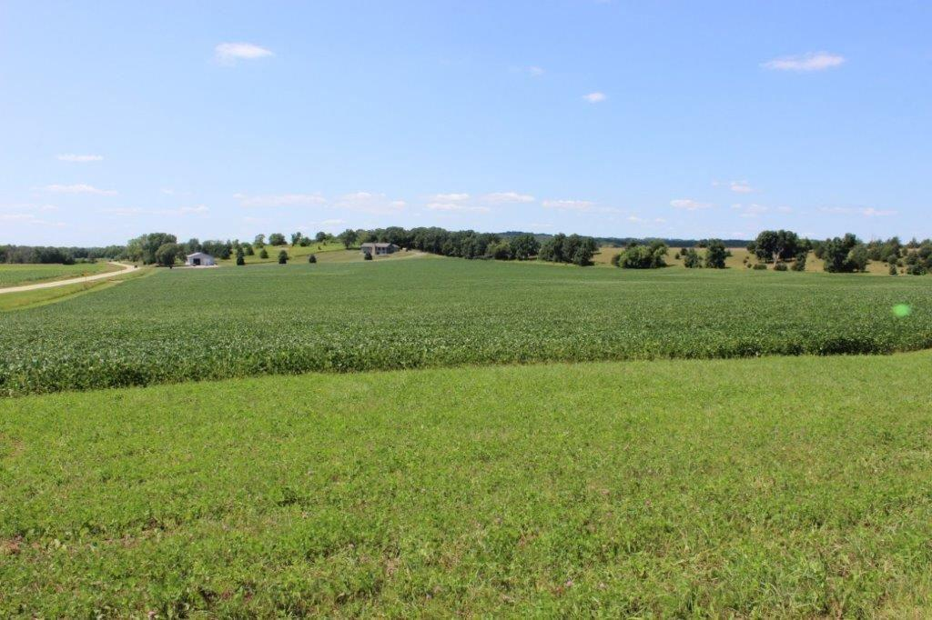 43 Ac County Road X - Photo 1