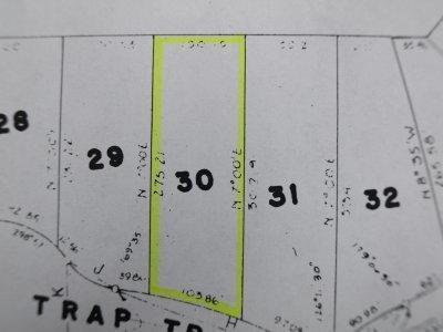 1176 Trap Tr, Rome, WI 54457 (#1862967) :: Nicole Charles & Associates, Inc.