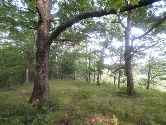 4.41 Ac County Road G, Greenfield, WI 54660 (#1863868) :: Nicole Charles & Associates, Inc.