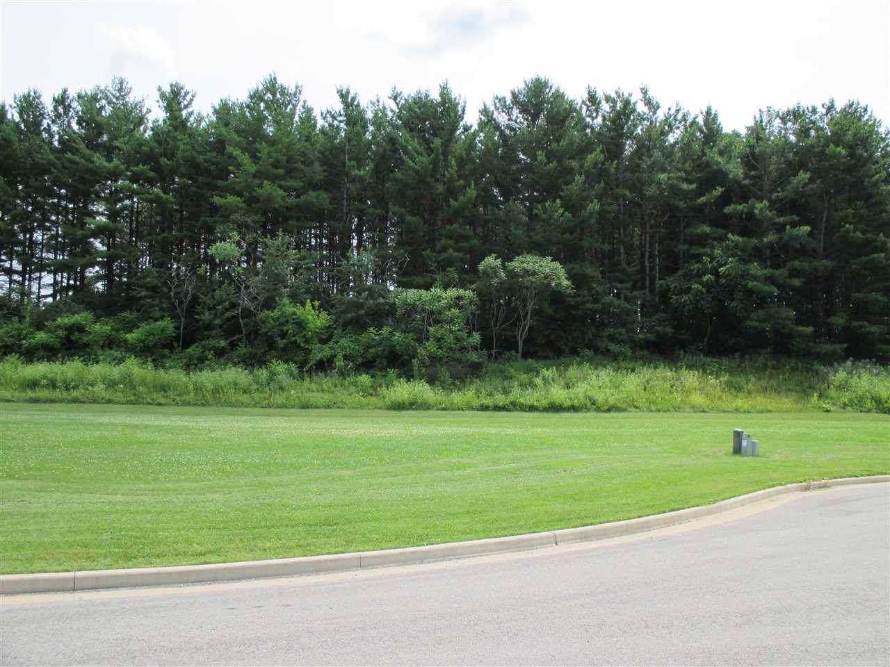 987 Pine Ridge Ct - Photo 1