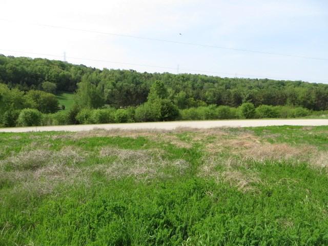 L17 Spring Lake Rd, Green Lake, WI 53946 (#1865120) :: Nicole Charles & Associates, Inc.
