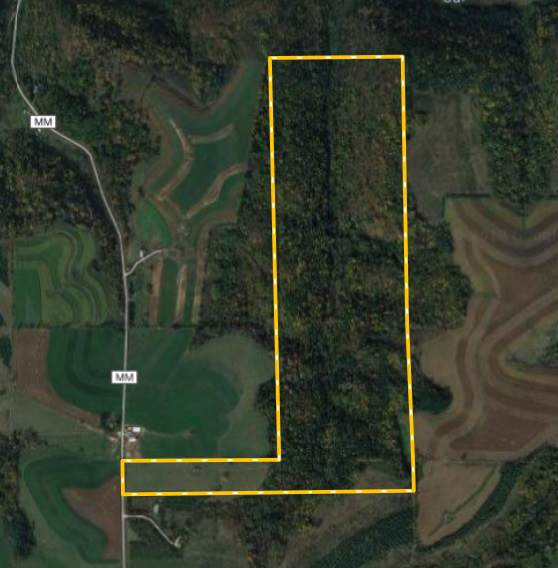14779 County Road Mm, Forest, WI 54664 (#1868292) :: Nicole Charles & Associates, Inc.
