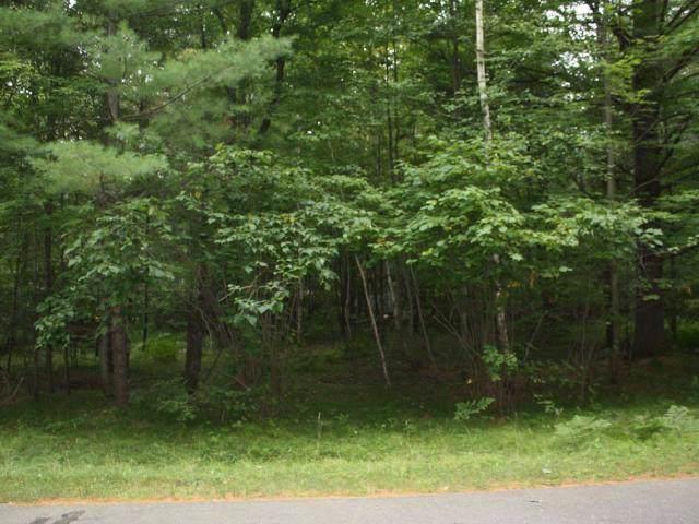 Arbor Vitae, WI 54568 :: HomeTeam4u
